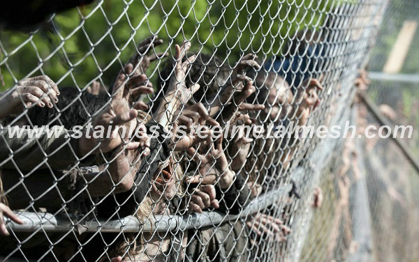 Stainless Steel Chain Link Fence Mesh